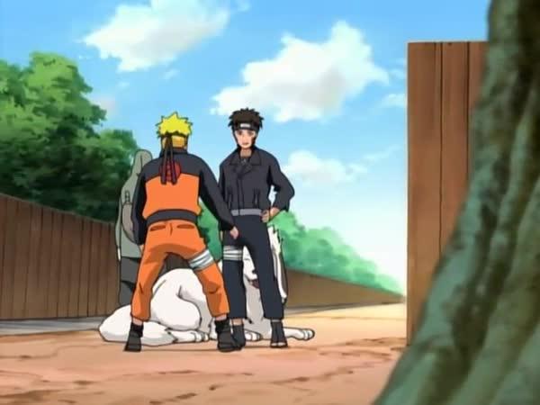 Naruto Shippuuden 33: Nový cíl - NARUTO-SHIPPUDEN.EU
